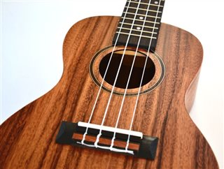 Twisted Wood Aurora Ukulele - AR800 zoom