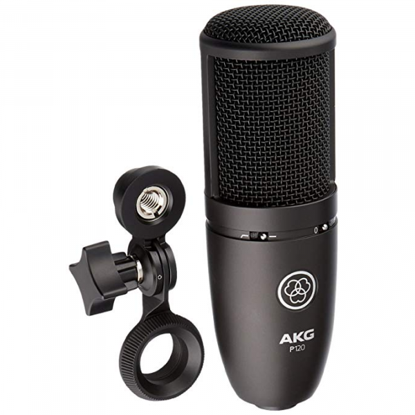 AKG P120 with holder