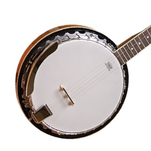 Alabama ALB25 5 String Banjo body