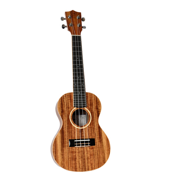 Twisted Wood Aurora Ukulele - AR800