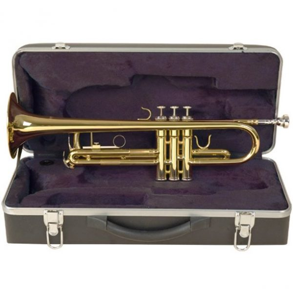 Palatino WI815TP Trumpet with case