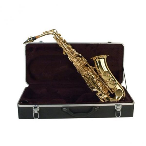 Palatino WI819A Alto Saxophone with case