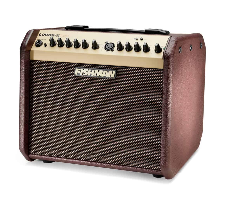 Fishman PROLBT500 right
