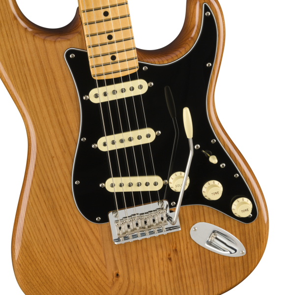 Fender American Professional II Stratocaster - Roasted Pine - 0113900763-front2